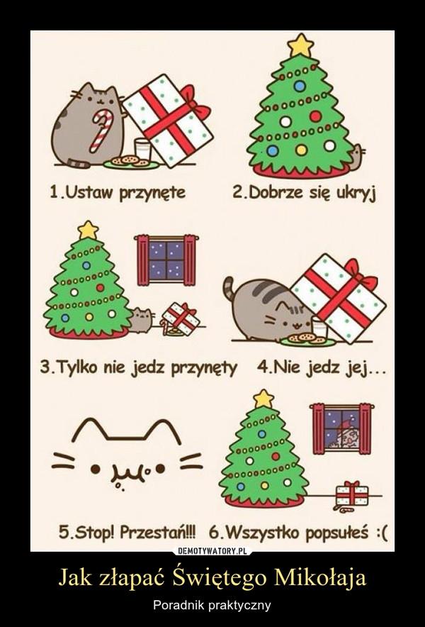 Jak złapać Świętego Mikołaja – Poradnik praktyczny