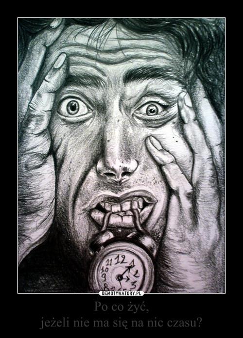 Po co żyć, jeżeli nie ma się na nic czasu?