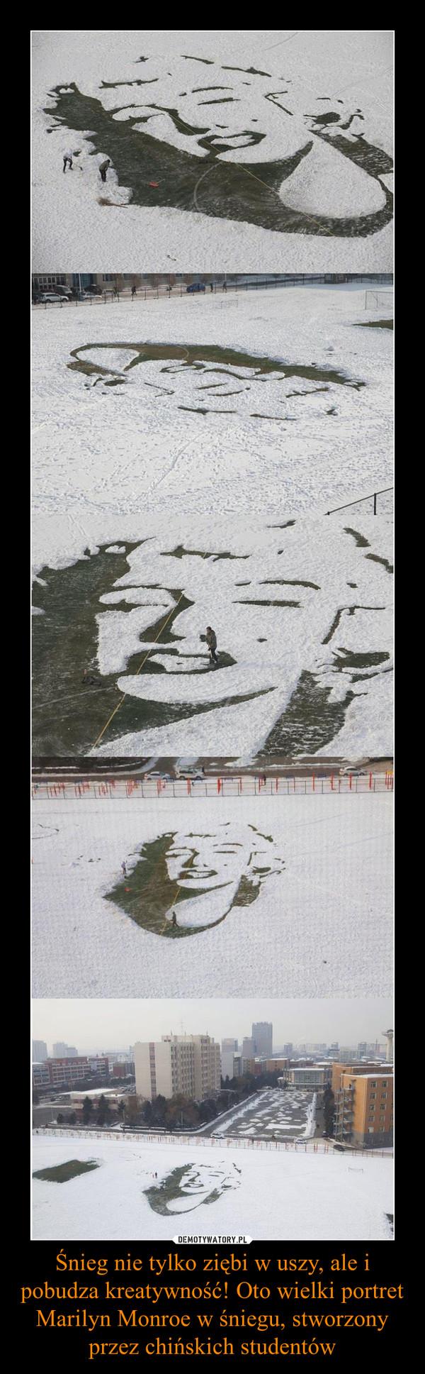 Śnieg nie tylko ziębi w uszy, ale i pobudza kreatywność! Oto wielki portret Marilyn Monroe w śniegu, stworzony przez chińskich studentów –