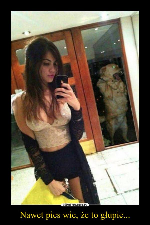 Nawet pies wie, że to głupie... –