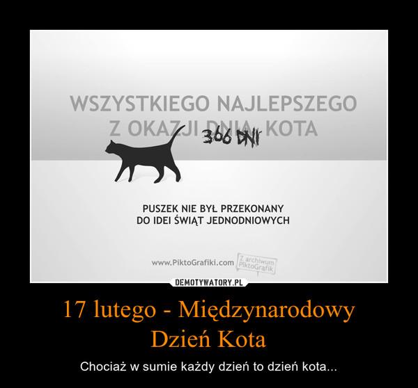 17 lutego - MiędzynarodowyDzień Kota – Chociaż w sumie każdy dzień to dzień kota...