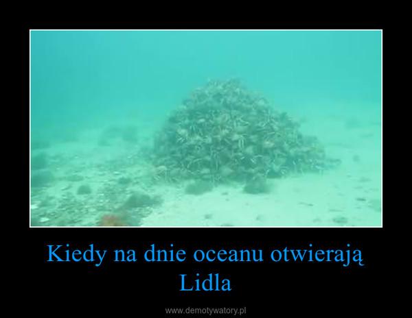Kiedy na dnie oceanu otwierają Lidla –