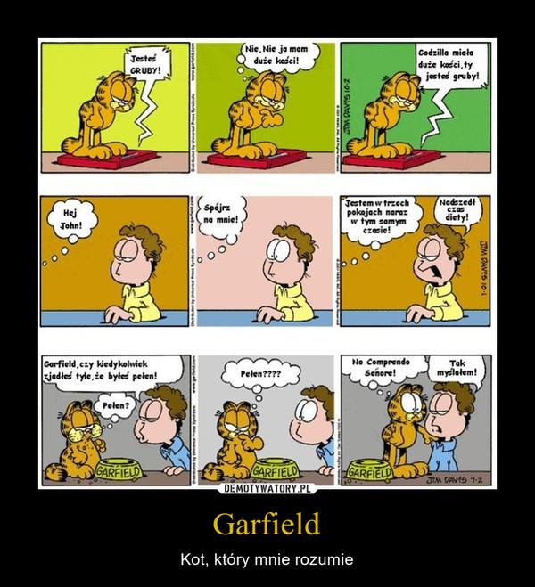 Garfield – Kot, który mnie rozumie