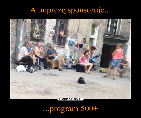 ...program 500+ –