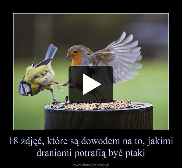 18 zdjęć, które są dowodem na to, jakimi draniami potrafią być ptaki –