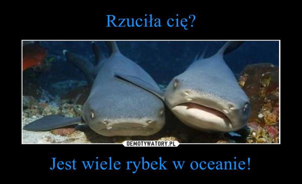 Jest wiele rybek w oceanie! –