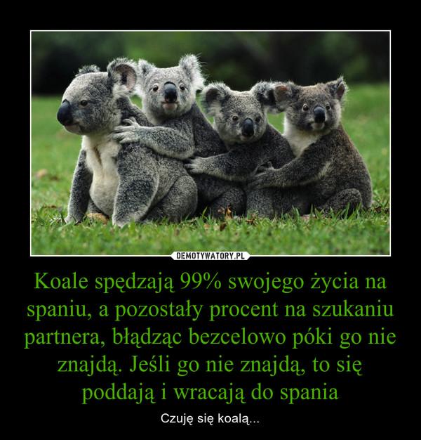 Koale spędzają 99% swojego życia na spaniu, a pozostały procent na szukaniu partnera, błądząc bezcelowo póki go nie znajdą. Jeśli go nie znajdą, to się poddają i wracają do spania – Czuję się koalą...