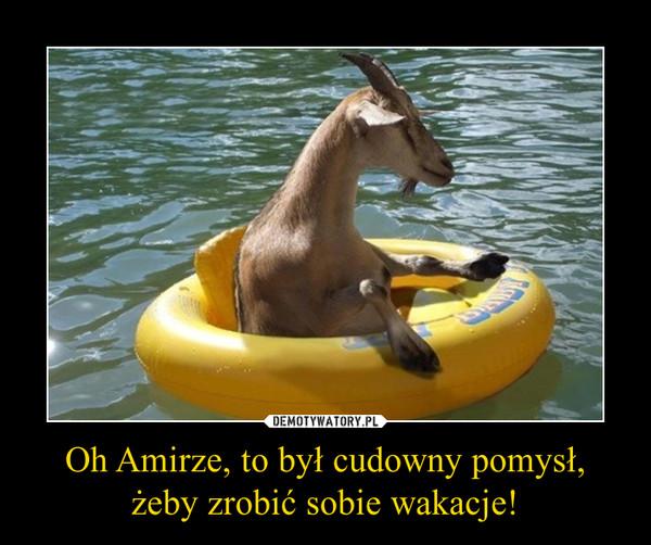 Oh Amirze, to był cudowny pomysł, żeby zrobić sobie wakacje! –
