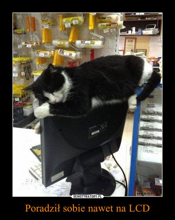 Poradził sobie nawet na LCD –