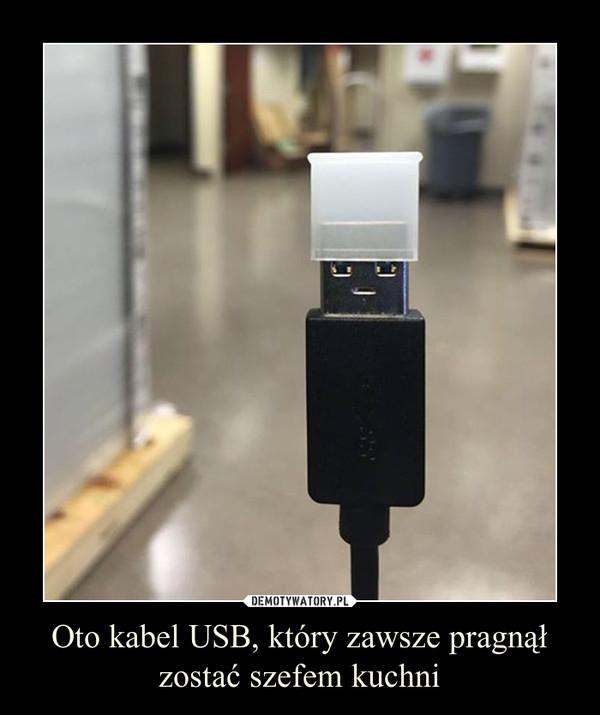 Oto kabel USB, który zawsze pragnął zostać szefem kuchni –