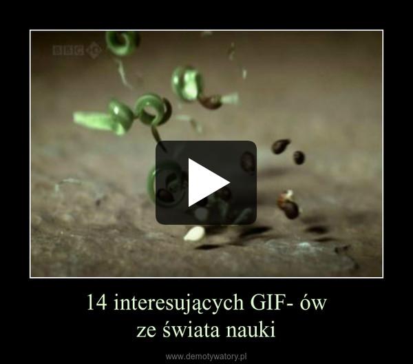 14 interesujących GIF- ówze świata nauki –