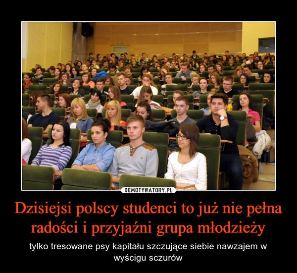 Dzisiejsi polscy studenci to już nie pełna radości i przyjaźni grupa młodzieży – tylko tresowane psy kapitału szczujące siebie nawzajem w wyścigu sczurów