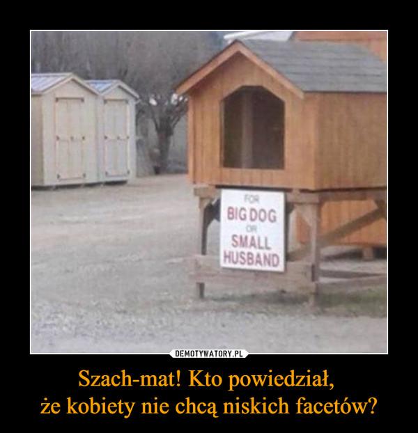 Szach-mat! Kto powiedział, że kobiety nie chcą niskich facetów? –  FOR BIG DOG OR SMALL HUSBAND