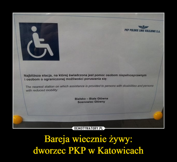 Bareja wiecznie żywy:dworzec PKP w Katowicach –