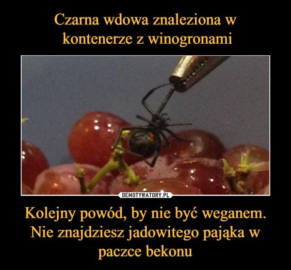 Kolejny powód, by nie być weganem. Nie znajdziesz jadowitego pająka w paczce bekonu –