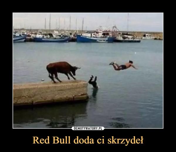Red Bull doda ci skrzydeł –