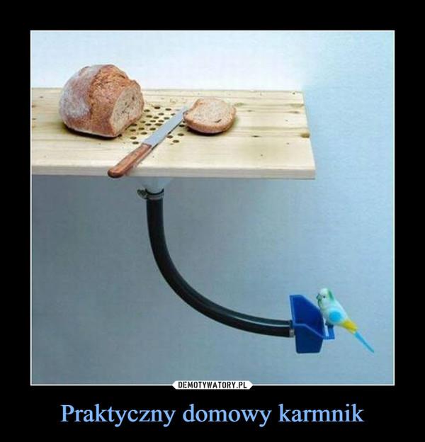 Praktyczny domowy karmnik –