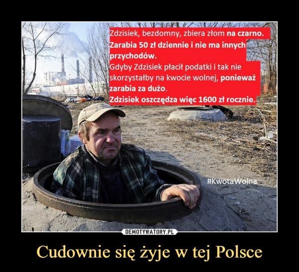 Cudownie się żyje w tej Polsce –