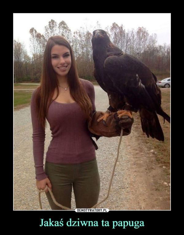 Jakaś dziwna ta papuga –