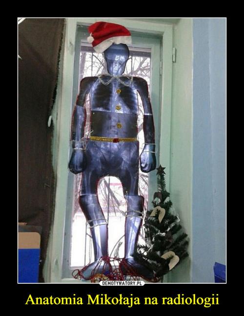 Anatomia Mikołaja na radiologii