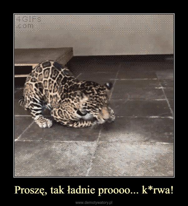 Proszę, tak ładnie proooo... k*rwa! –