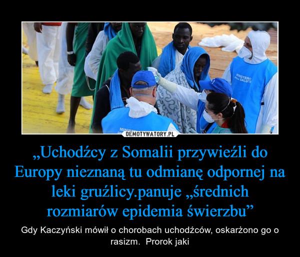 """""""Uchodźcy z Somalii przywieźli do Europy nieznaną tu odmianę odpornej na leki gruźlicy.panuje """"średnich rozmiarów epidemia świerzbu"""" – Gdy Kaczyński mówił o chorobach uchodźców, oskarżono go o rasizm.  Prorok jaki"""
