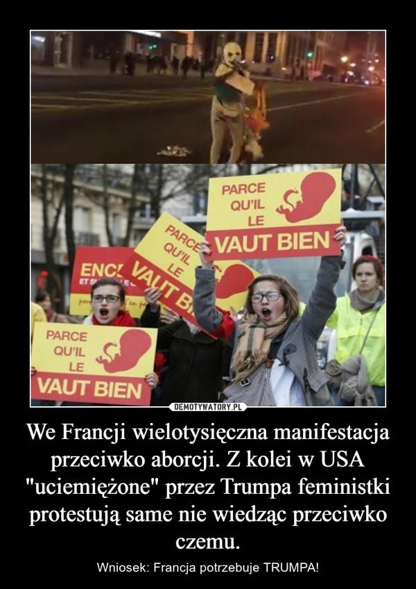 """We Francji wielotysięczna manifestacja przeciwko aborcji. Z kolei w USA """"uciemiężone"""" przez Trumpa feministki protestują same nie wiedząc przeciwko czemu. – Wniosek: Francja potrzebuje TRUMPA!"""