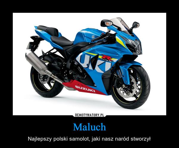 Maluch – Najlepszy polski samolot, jaki nasz naród stworzył