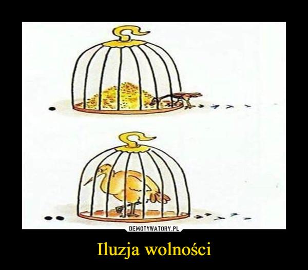Iluzja wolności –