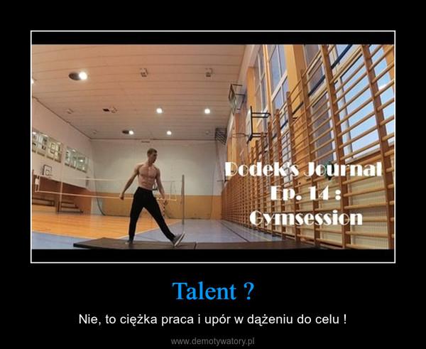 Talent ? – Nie, to ciężka praca i upór w dążeniu do celu !