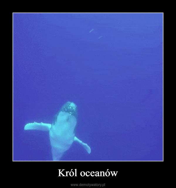 Król oceanów –