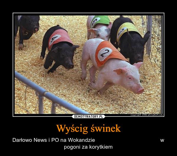 Wyścig świnek – Darłowo News i PO na Wokandzie                                           w pogoni za korytkiem