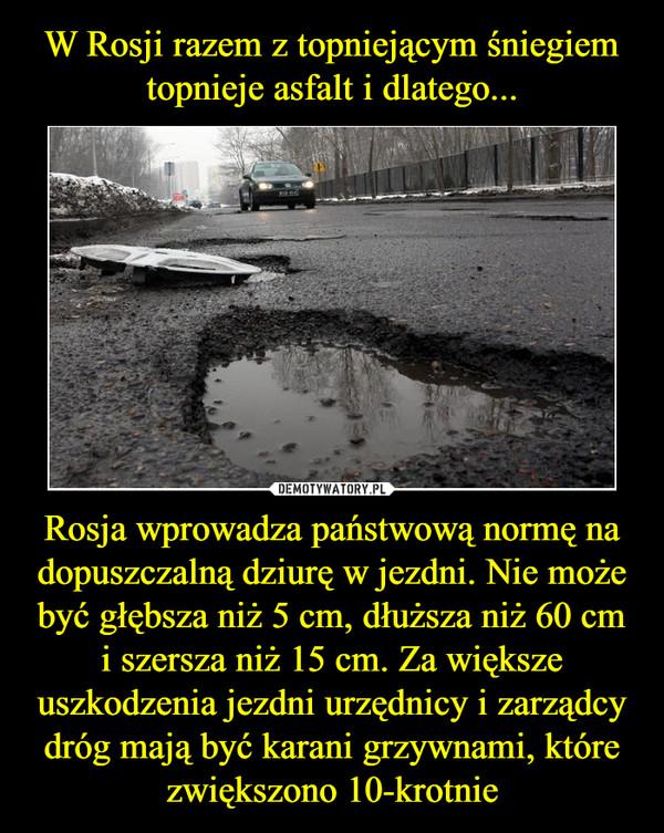 Rosja wprowadza państwową normę na dopuszczalną dziurę w jezdni. Nie może być głębsza niż 5 cm, dłuższa niż 60 cm i szersza niż 15 cm. Za większe uszkodzenia jezdni urzędnicy i zarządcy dróg mają być karani grzywnami, które zwiększono 10-krotnie –