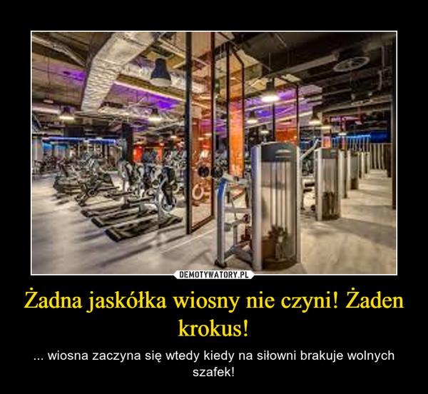 Żadna jaskółka wiosny nie czyni! Żaden krokus! – ... wiosna zaczyna się wtedy kiedy na siłowni brakuje wolnych szafek!