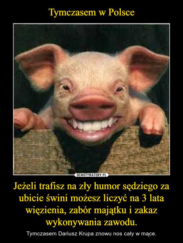 Jeżeli trafisz na zły humor sędziego za ubicie świni możesz liczyć na 3 lata więzienia, zabór majątku i zakaz wykonywania zawodu. – Tymczasem Dariusz Krupa znowu nos cały w mące.
