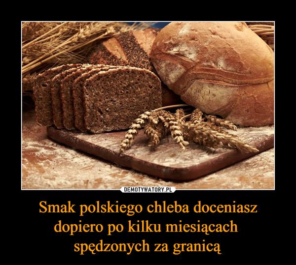 Smak polskiego chleba doceniasz dopiero po kilku miesiącach spędzonych za granicą –