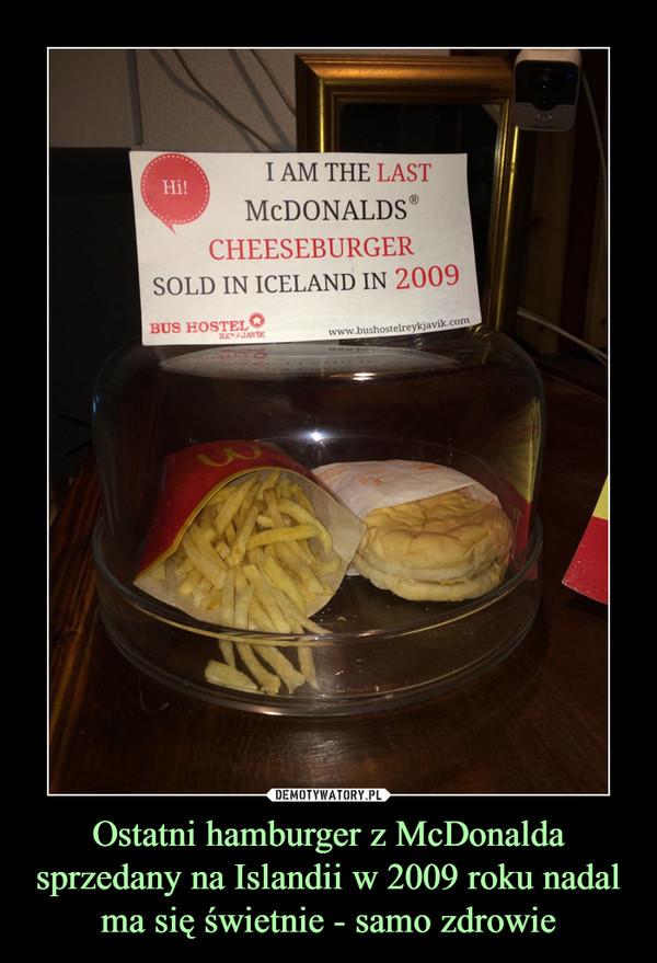 Ostatni hamburger z McDonalda sprzedany na Islandii w 2009 roku nadal ma się świetnie - samo zdrowie –