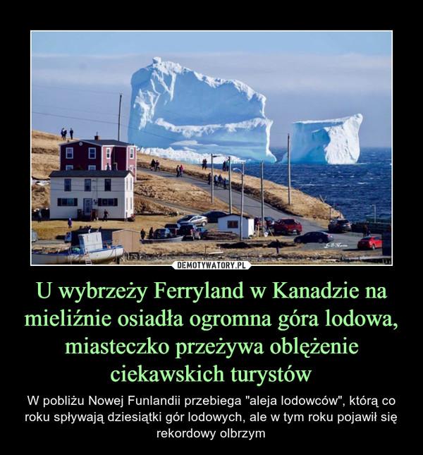 """U wybrzeży Ferryland w Kanadzie na mieliźnie osiadła ogromna góra lodowa, miasteczko przeżywa oblężenie ciekawskich turystów – W pobliżu Nowej Funlandii przebiega """"aleja lodowców"""", którą co roku spływają dziesiątki gór lodowych, ale w tym roku pojawił się rekordowy olbrzym"""