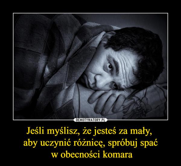 Jeśli myślisz, że jesteś za mały, aby uczynić różnicę, spróbuj spać w obecności komara –