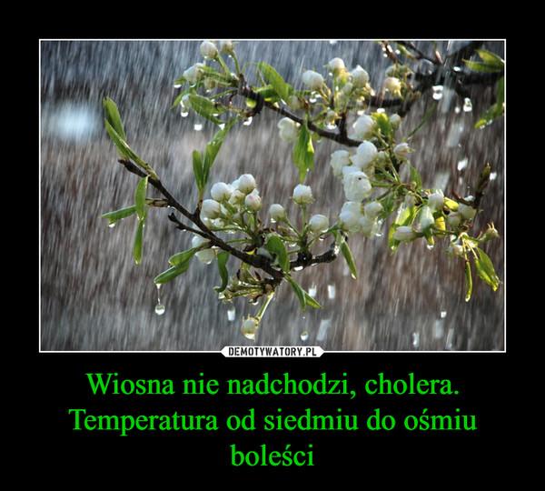 Wiosna nie nadchodzi, cholera. Temperatura od siedmiu do ośmiu boleści –