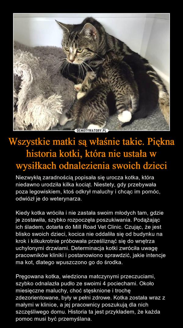 Wszystkie matki są właśnie takie. Piękna historia kotki, która nie ustała w wysiłkach odnalezienia swoich dzieci – Niezwykłą zaradnością popisała się urocza kotka, która niedawno urodziła kilka kociąt. Niestety, gdy przebywała poza legowiskiem, ktoś odkrył maluchy i chcąc im pomóc, odwiózł je do weterynarza.Kiedy kotka wróciła i nie zastała swoim młodych tam, gdzie je zostawiła, szybko rozpoczęła poszukiwania. Podążając ich śladem, dotarła do Mill Road Vet Clinic. Czując, że jest blisko swoich dzieci, kocica nie oddaliła się od budynku na krok i kilkukrotnie próbowała prześliznąć się do wnętrza uchylonymi drzwiami. Determinacja kotki zwróciła uwagę pracowników kliniki i postanowiono sprawdzić, jakie intencje ma kot, dlatego wpuszczono go do środka.Pręgowana kotka, wiedziona matczynymi przeczuciami, szybko odnalazła pudło ze swoimi 4 pociechami. Około miesięczne maluchy, choć stęsknione i trochę zdezorientowane, były w pełni zdrowe. Kotka została wraz z małymi w klinice, a jej pracownicy poszukują dla nich szczęśliwego domu. Historia ta jest przykładem, że każda pomoc musi być przemyślana.