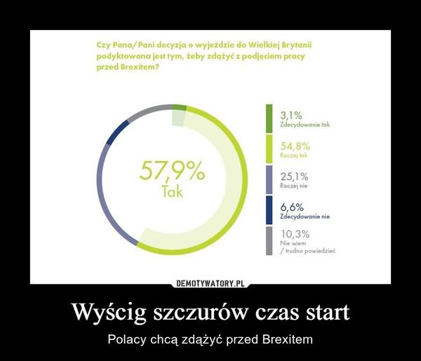 Wyścig szczurów czas start – Polacy chcą zdążyć przed Brexitem