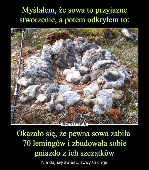 Okazało się, że pewna sowa zabiła 70 lemingów i zbudowała sobiegniazdo z ich szczątków – Nie daj się zwieść, sowy to ch*je