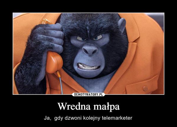 Wredna małpa – Ja,  gdy dzwoni kolejny telemarketer