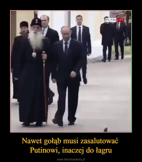 Nawet gołąb musi zasalutować Putinowi, inaczej do łagru –