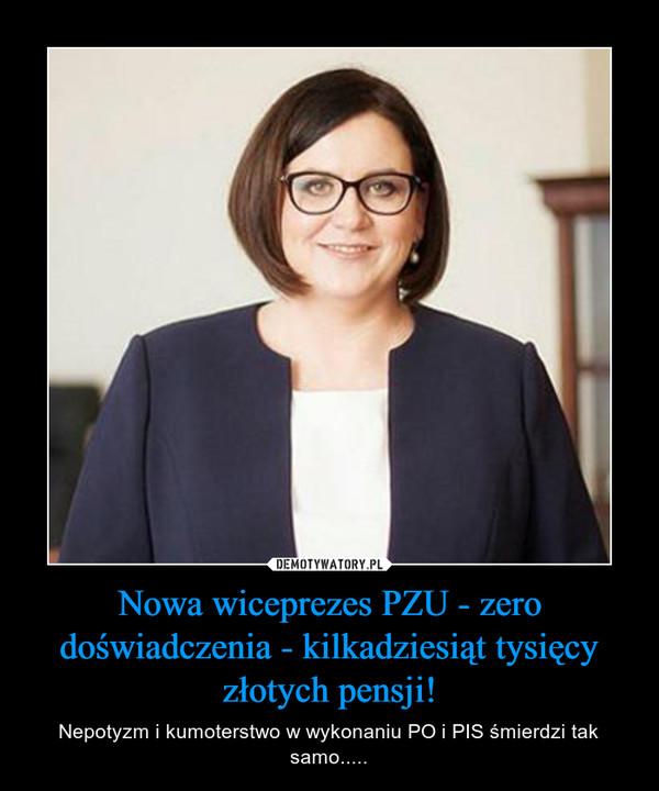 Nowa wiceprezes PZU - zero doświadczenia - kilkadziesiąt tysięcy złotych pensji! – Nepotyzm i kumoterstwo w wykonaniu PO i PIS śmierdzi tak samo.....