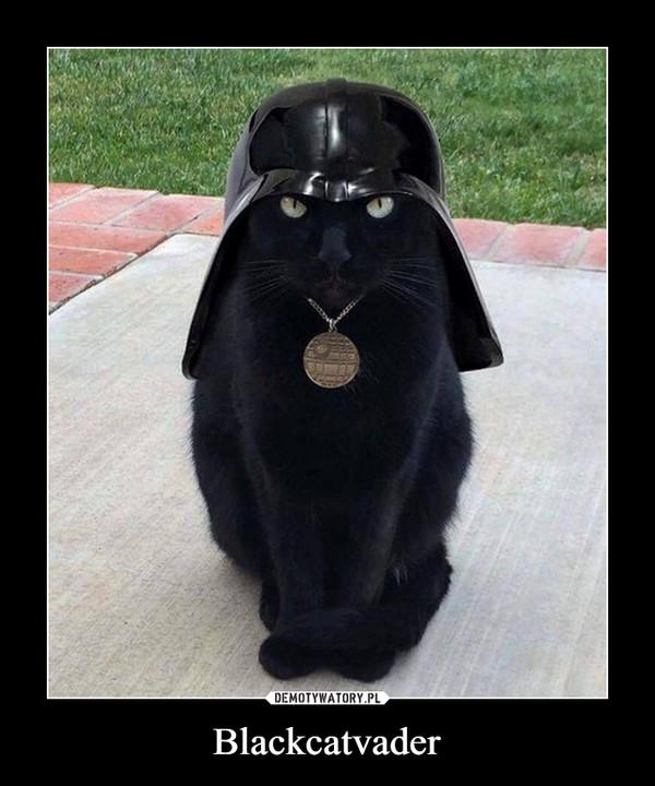 Blackcatvader –