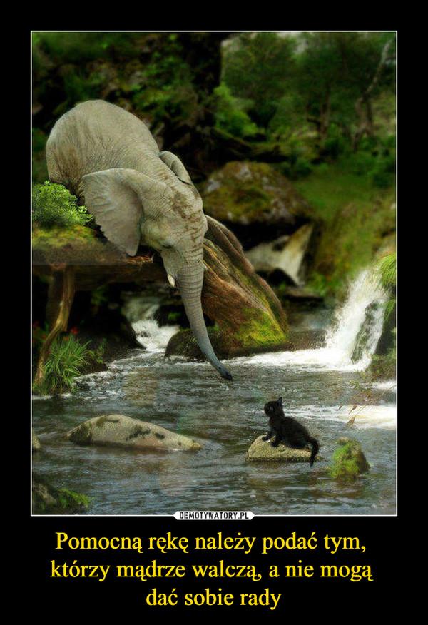 Pomocną rękę należy podać tym, którzy mądrze walczą, a nie mogą dać sobie rady –