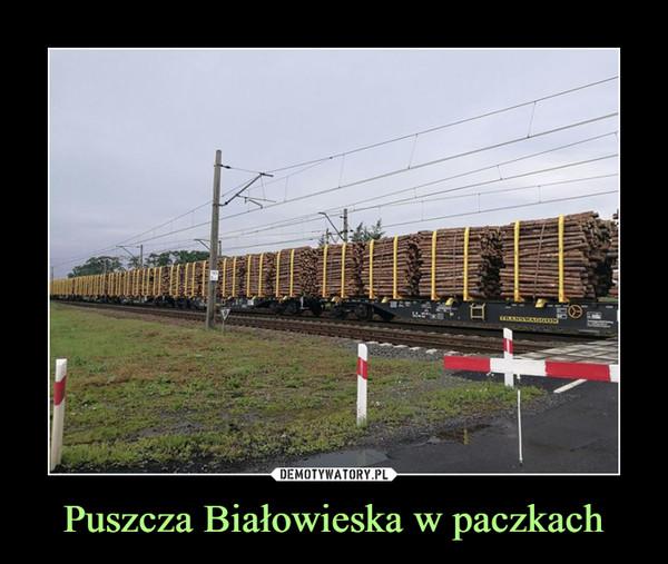 Puszcza Białowieska w paczkach –