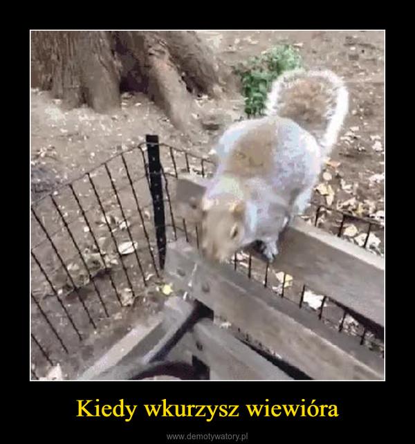 Kiedy wkurzysz wiewióra –